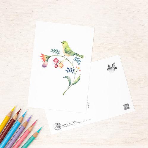 """ポストカード """"緑の小鳥と草花"""" PC-38"""