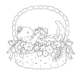 花かごのなかのらっこのポタの線画