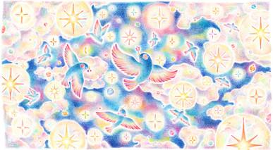 星あふれる夜空を舞う鳥たち