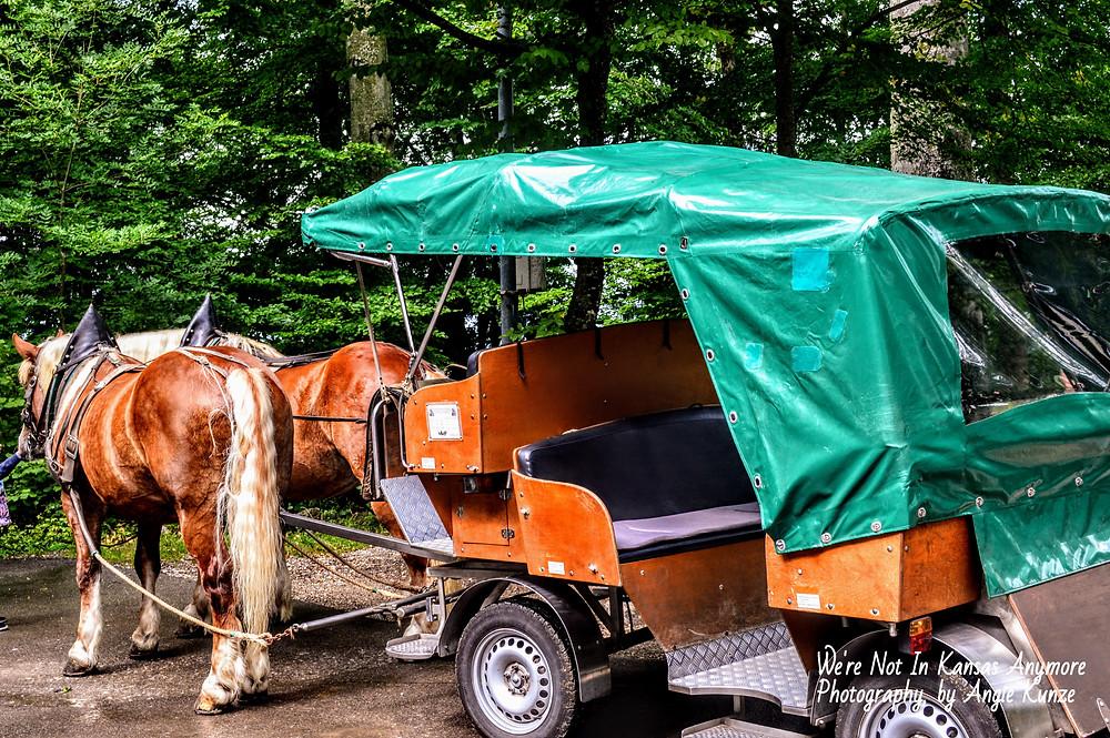 carriage ride, neuschwanstein castle, bavaria germany