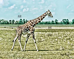 """giraffe"" graphic style"
