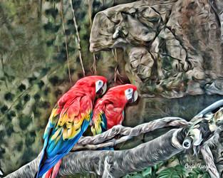 """parrots"" graphic style"