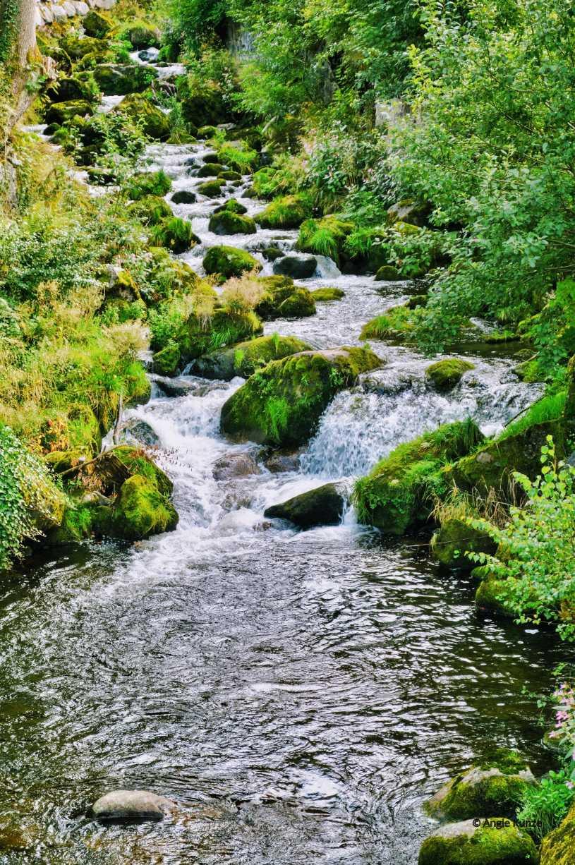 stream, brook runoff triberg waterfall, black forest germany