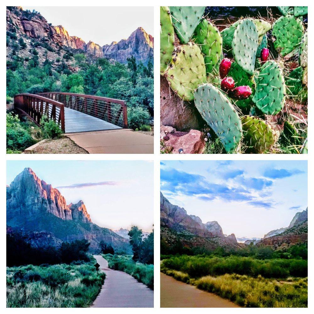 Pa'Rus paved hiking trail Zion National Park Utah