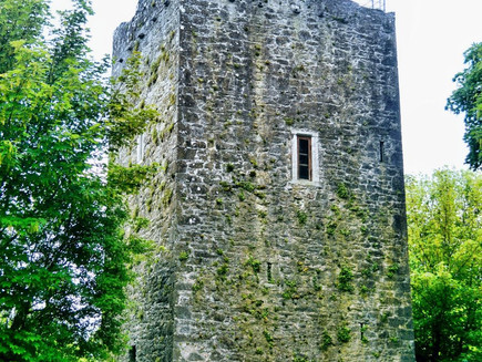 Ballintotis Castle, Ireland: Be Queen (or King) of your very own castle for under $150 per night!