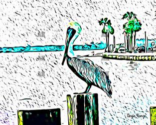 pelican pop art