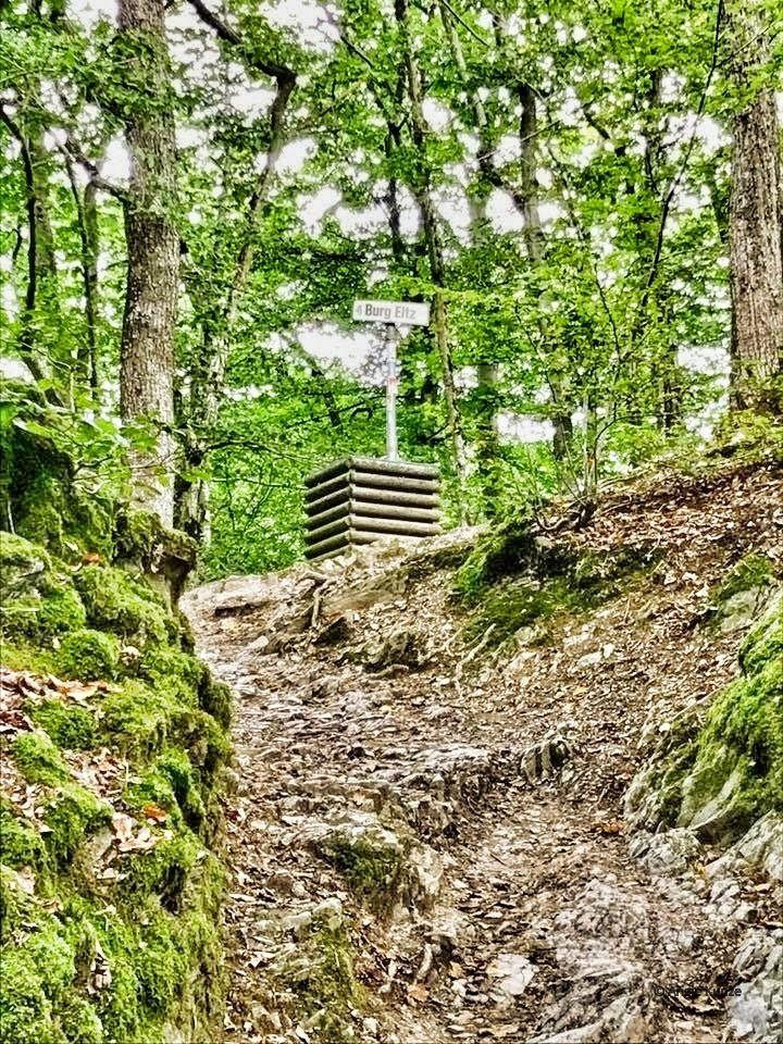 walking trail from Moselkern to Berg Eltz castle, eltz forest germany