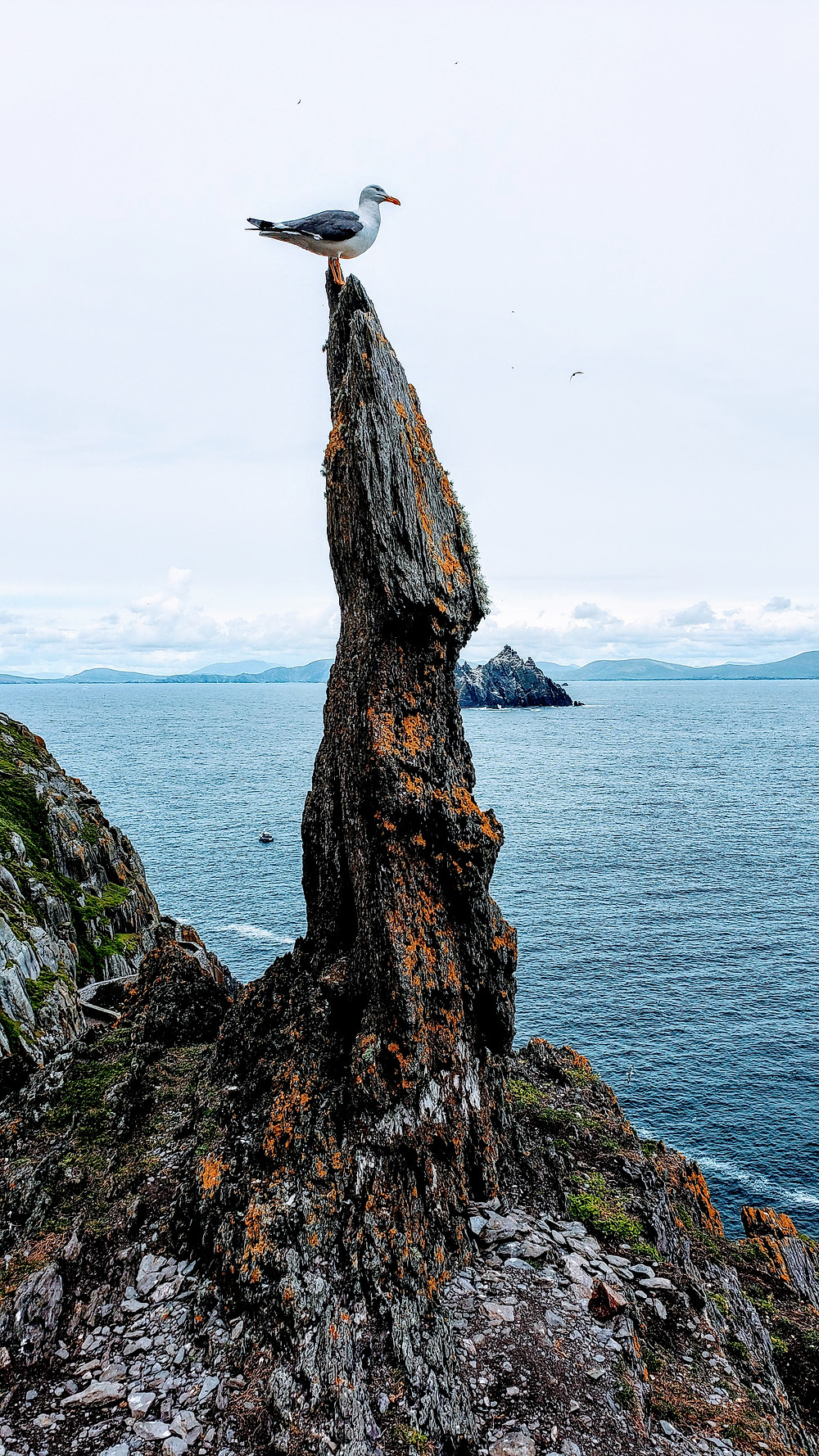 Little Skellig, as seen from Skellig Michael, off the cost of the Kerry Peninsula in Ireland, ancient monk colony,