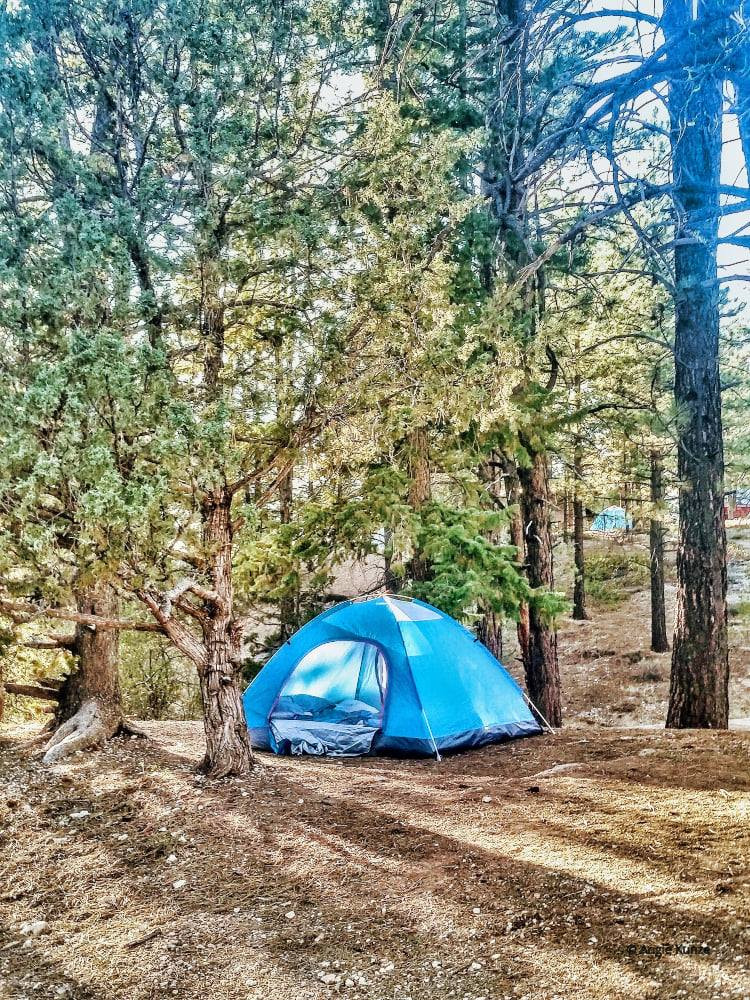 camping under the pine trees, north campsite in Bryce Canyon National Park Utah