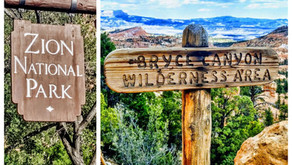 Road Trip'ing Arizona & Utah: Zion & Bryce National Parks, camping, hiking, and stops along the way