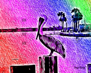 pelican rainbow
