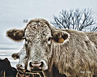 """cow #2"""