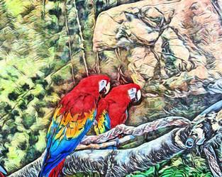 """""""parrots"""" watercolor style"""