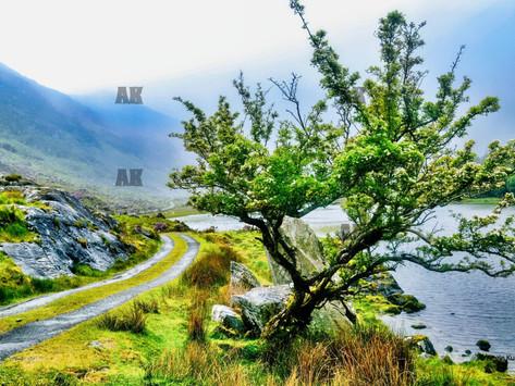 A hidden valley in Ireland: Serene, calm, and stunning...a little piece of Heaven