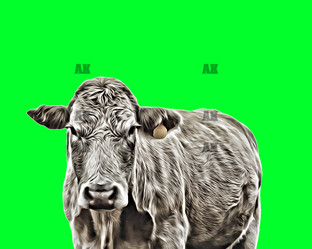 """""""green cow"""""""