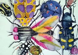 Insects in color | Värikkäät hyönteiset