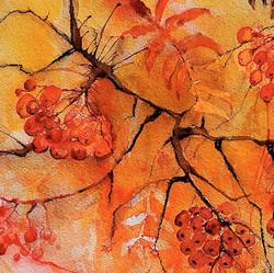 Autumn berries   Syksyn marjat
