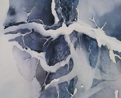 Snowy branch | Luminen oksa