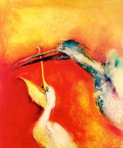 Pelicans | Pelikaanit