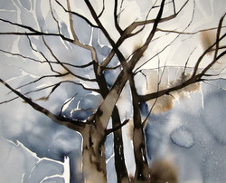 Autumn trees | Syyspuut