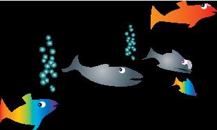 Kaloja, Eläinten maassa tapahtuu kummia! -kirjasta, Marsa Pihlaja