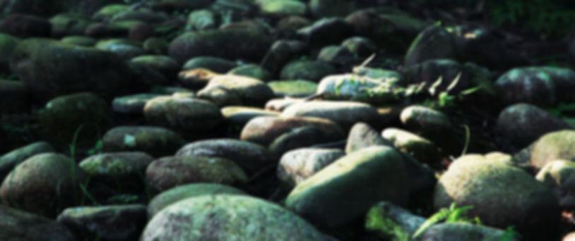 和歌山県田辺市の世界遺産、熊野古道の熊野詣。