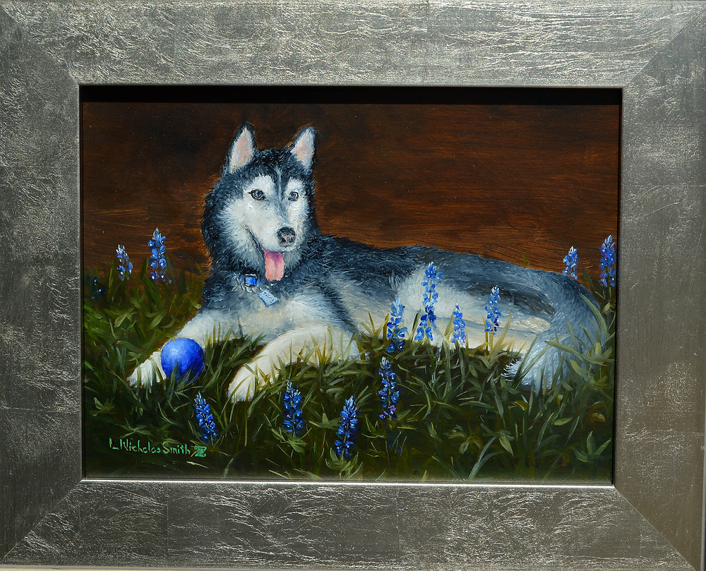 Siberian Husky oil painting portrait in silver frame laying in bluebonnets