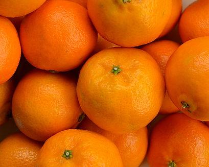 Photo of mandarins by Yvette Smith