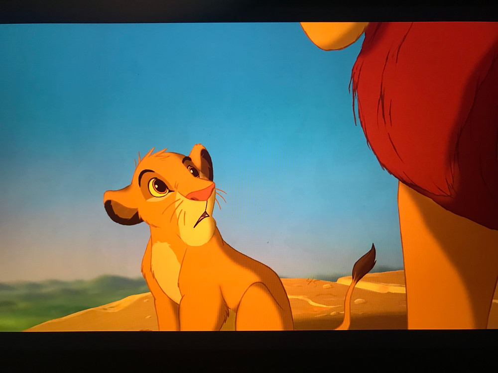 Scren shot of the 1994 The Lion King movie with slide 45 still showing Silver Oak Art discovery