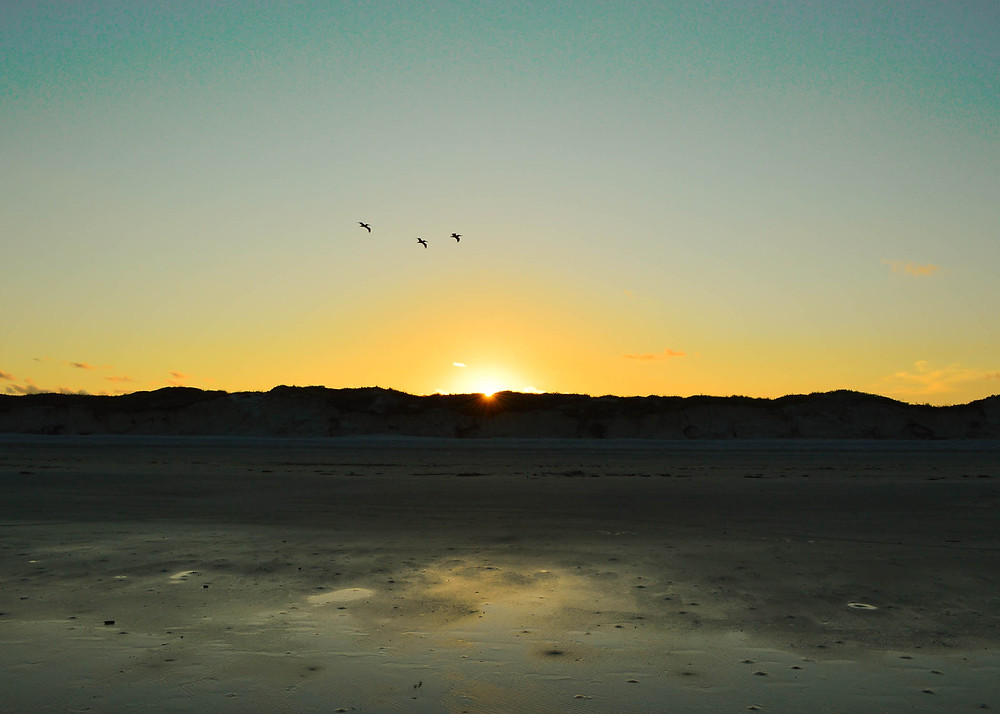 photo of sun set over Texas America on Padre Island with 3 pelicans flying and low tide wet sand with dark sand dunes for Silver Oak Art USA