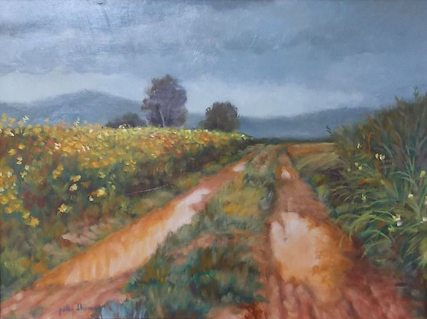 dirt road Texas, (c) Patty Thomas, artist from Ingram Texas