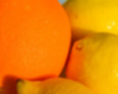 Photo of orange and lemons by Yvette Smith