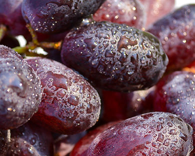 Photo of grapes by Yvette Smith