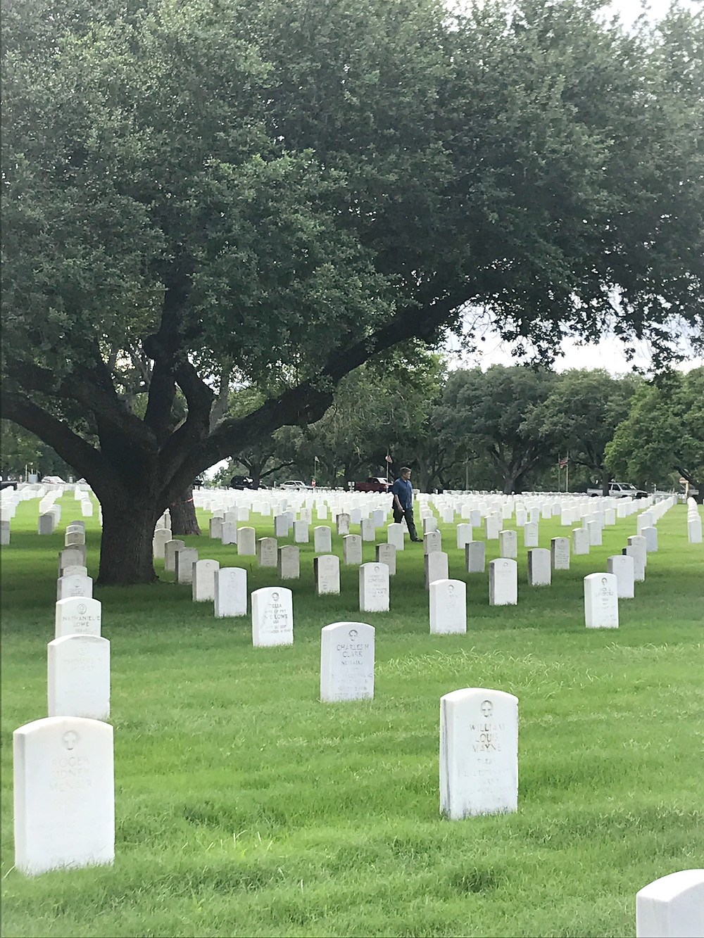 Retired US Army Officer L. Nicholas Smith walks among military graves headstones under a live oak tree photo at Fort Sam Houston National Cemetery on Memorial Day 2021