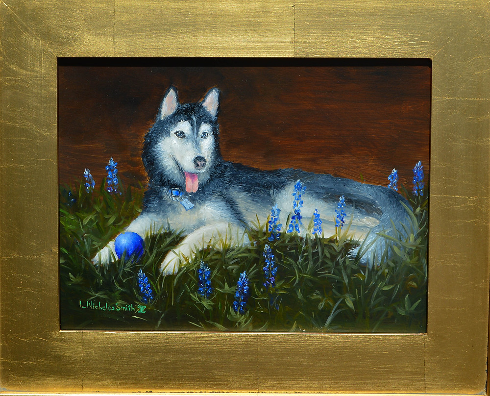 Siberian husky oil painting portrait in bed of bluebonnets in gold frame