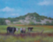 (c) Patty Thomas, artist, cows in pasture, Texas