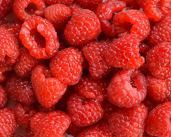 Photo of raspberries by Yvette Smith