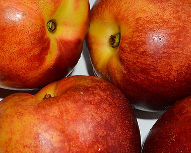 Photo of Nectarines by Yvette Smith