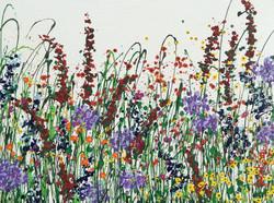 (c) Jacobson-Heavenly Meadow