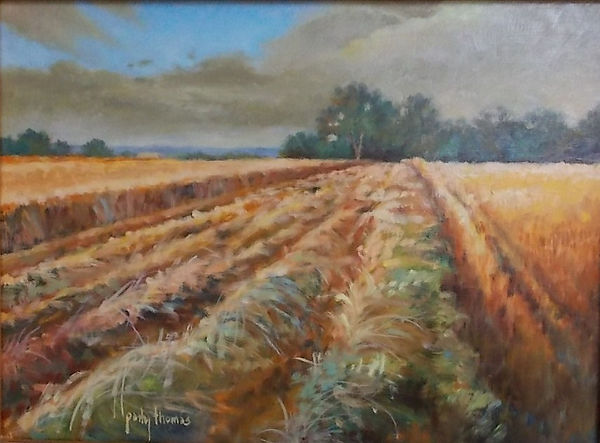 golden harvest field (c) Patty Thomas, artist, Ingram Texas
