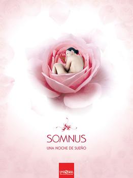 Rosen-SOMNUS.jpg