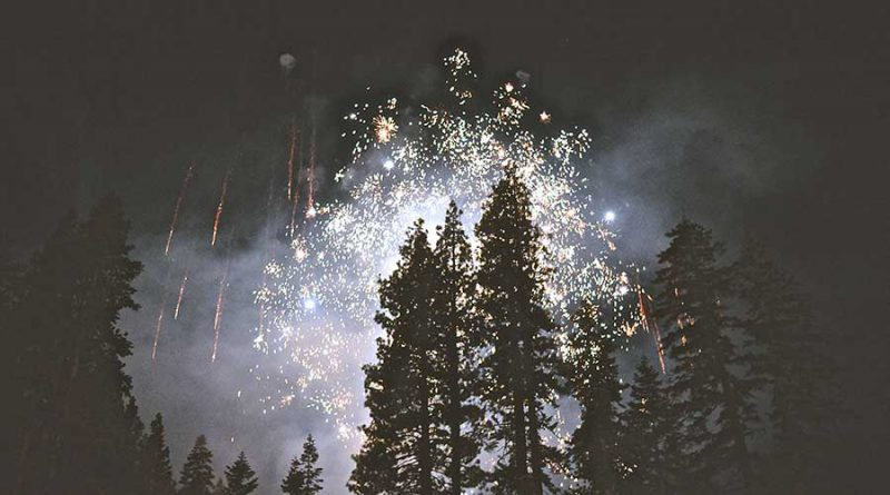 Fireworks and Trees