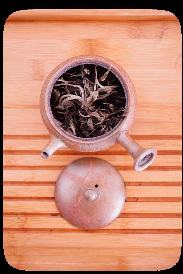 名古屋 彩雲 中国茶 雲南 工芸品