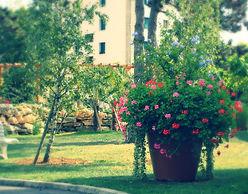 Parc fleuri - Résidence Les Primevères - BEAUNE