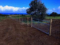 Fencing_edited_edited.jpg