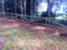 IMG_3530_edited.jpg