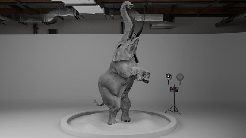 Elephant_Textured_v15_10120.jpg