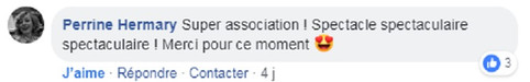 commentaire5.jpg