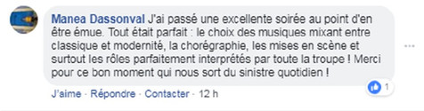 commentaire21.jpg