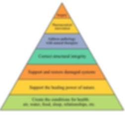 naturopathic therapeutic order